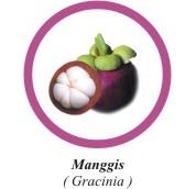 Manggis
